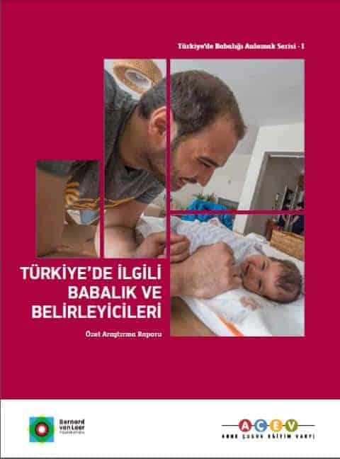 Türkiye'de İlgili Babalık ve Belirleyicileri: Özet Rapor