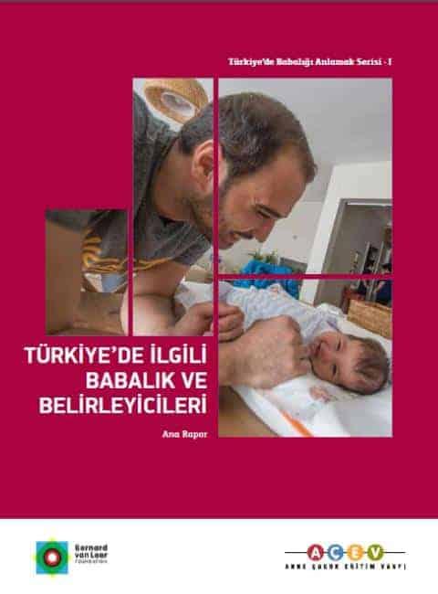 Türkiye'de İlgili Babalık ve Belirleyicileri: Ana Rapor