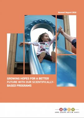 2016- Annual Report